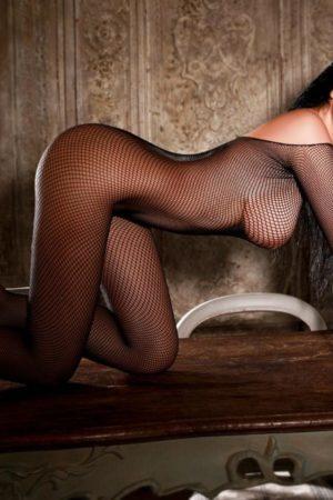 Paddington Escort Layla. Stunning slim and busty model on all fours, at 24hr London Escorts Agency